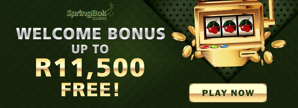 Special Christmas gift at Springbok Casino