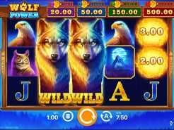 Wolf Power: Hold and Win Slots